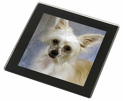 Chinese Crested Powder Puff Dog Black Rim Glass Coaster Animal Breed , AD-CHC3GC