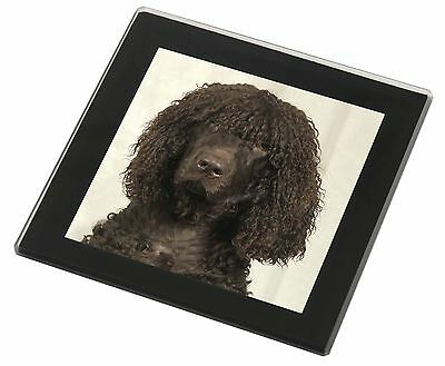 Irish Water Spaniel Dog Black Rim Glass Coaster Animal Breed Gift, AD-IWSGC
