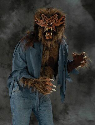 Komplette Werwolf Biest Erwachsene Halloween Kostüm Wolfsmaske Handschuhe