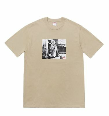 Supreme Mike Kelley Hiding From Indians Tee Size Medium Clay FW18 Box Logo New