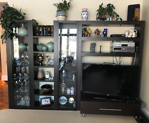 High End Wall Unit with TV stand
