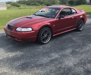 1999 Ford Mustang GT -Excellent Condition