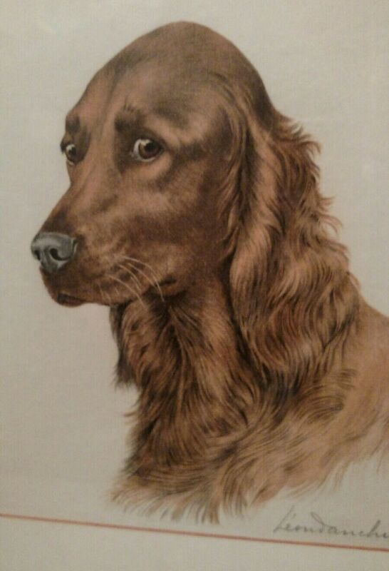 Listed Leon Danchin ( French 1887-1938) Irish Setter dog  etching pencil signed