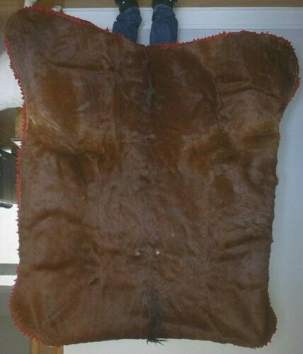 Excellent Antique COWNIE TANNING CO. Horse Hair Sleigh Carriage Blanket & Gloves