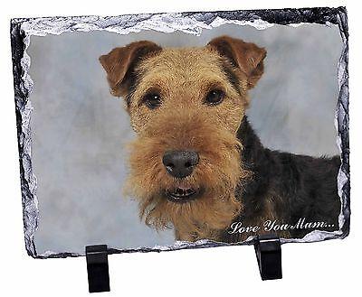 Welsh Terrier Dog 'Love You Mum' Photo Slate Christmas Gift Ornamen, AD-WT1lymSL