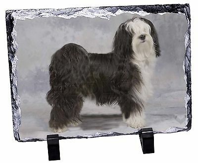 Tibetan Terrier Dog Photo Slate Christmas Gift Ornament, AD-TT3SL