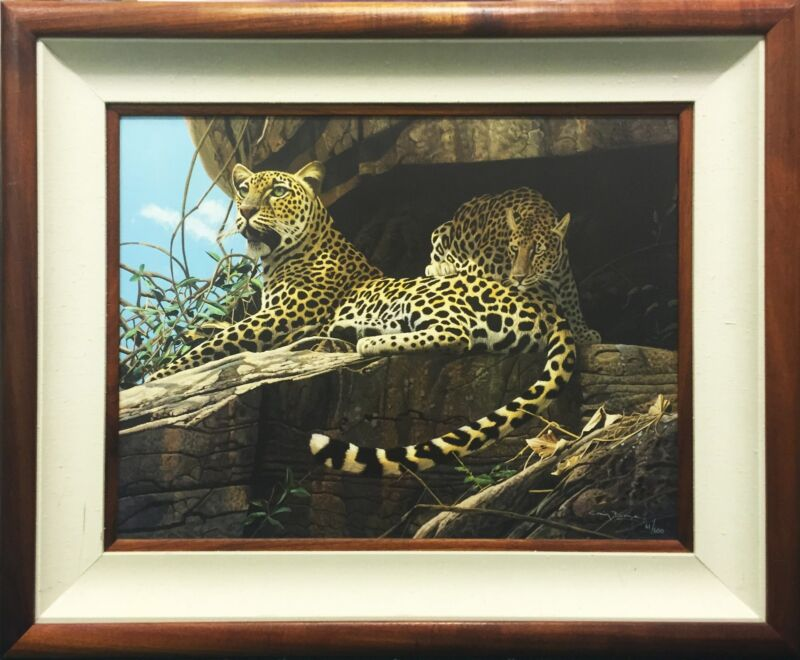 "Craig Bone ""leopards"" 