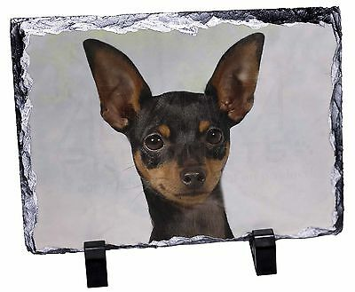 English Toy Terrier Dog Photo Slate Christmas Gift Ornament, AD-ET1SL