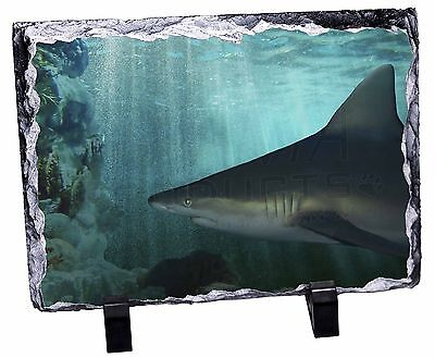 Shark Photo Photo Slate Christmas Gift Ornament, AF-SHA1SL