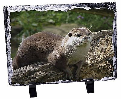River Otter Photo Slate Christmas Gift Ornament, AO-2SL