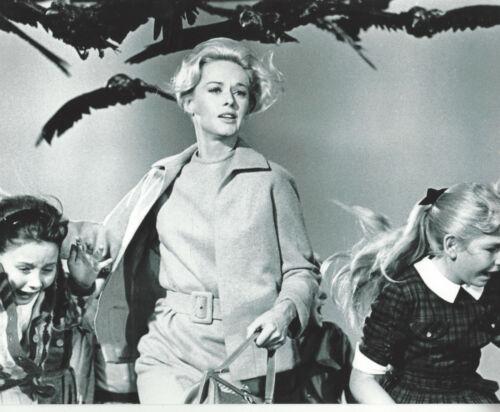 1963 Movie THE BIRDS 8x10 photo of Tippi Hedren running with kids