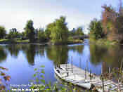 Tay River! 2 acre residential lots - Perth Village Peterborough Peterborough Area image 2