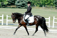 Opportunity for 12-14 yr old dressage riders - FEI children's