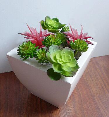 Plastic Artificial Grass Plant (Set of 10 Artificial Mini Plastic Plants Miniature Succulents)