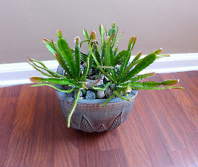 3 Cactus Desert Succulent Plants Lifelike Artificial Grass Landscape for sale  Shipping to India