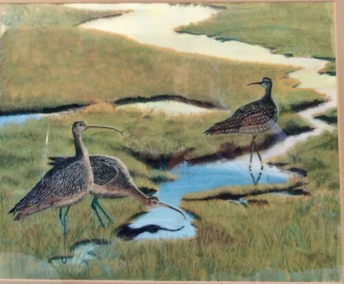 Original Shorebird Painting by J L Reardon of Curlews, Watercolor,Signed, Framed