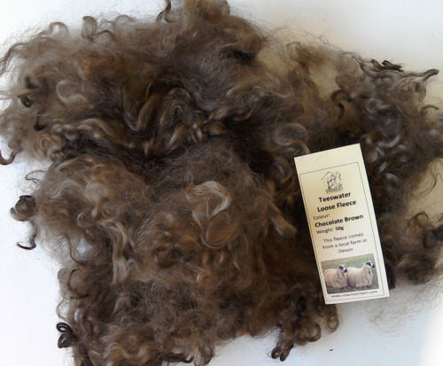 Teeswater Loose Fleece in Chocolate Brown for Spinning and Crafts 50g