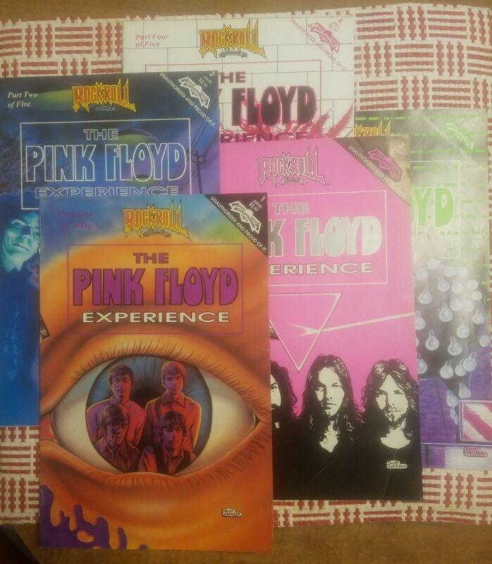 PINK FLOYD EXPERIENCE All 5 issues. Rock and Roll Comics Spike Steffenhagen