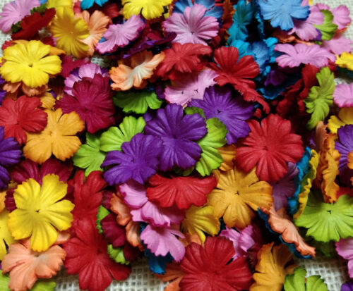 50+Mixed+Colorful+Petals+Carnation+Flowers+Mulberry+Paper+For+Craft+Scrapbooking