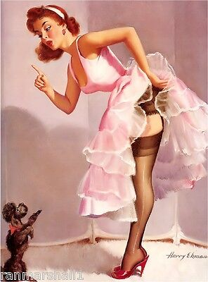 1940s Pin-Up Girl No Jumping Up Poodle Dog Picture Poster Print Art Pin Up