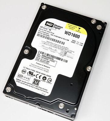 Sata Festplatte Server (Festplatte WD Caviar 1600 SD SATA 160GB Server 24/7 ca.2000 Einschaltungen GUT)