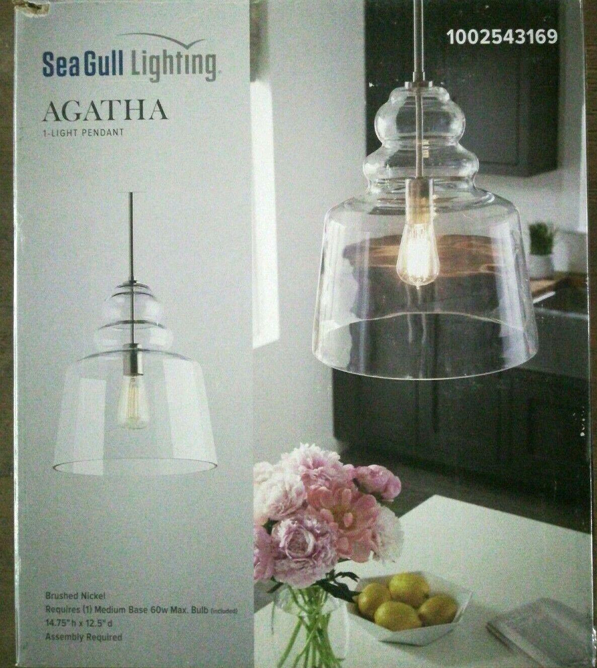 Sea Gull Lighting Agatha 12.5 in. W x 14.75 in. H 1-Light Cl