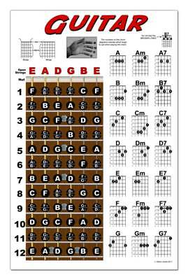Guitar Chord Wall Chart Fretboard Instructional Poster Beginner Chords Notes -