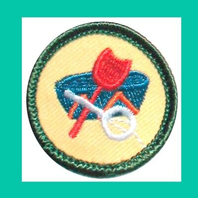 LOCAL LORE Girl Scout 2001 Jr Jade BADGE Shovel Basket NEW Patch VOLUME DISCOUNT - Discount Baskets