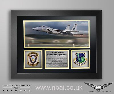 493rd Fighter Squadron Patch set FRAMED PRESENTATION, 48th FW, RAF Lakenheath.