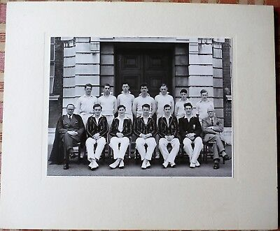 Cardiff (University?) Cricket team Photograph c 1953