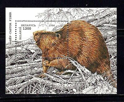 Belarus Souvenir Sheet #143, MNHOG, XF