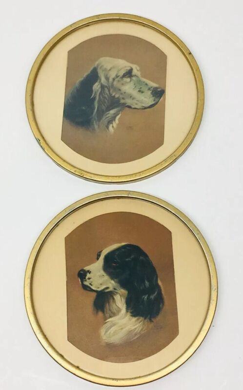 Vintage English Setter Art by Alpnarly Lyster- Print- Framed