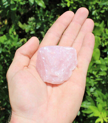 (Single LARGE Rough Rose Quartz Raw Crystal Love Stone Natural Specimen (2