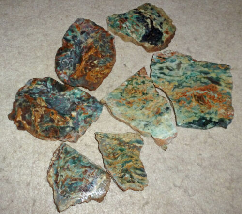7 Small Green Plasma Agate Rock Slabs from Clear Creek in Calif. Some Red