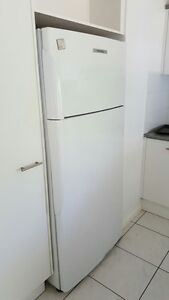 Fisher and Paykel Fridge freezer Arundel Gold Coast City Preview