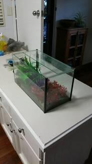 Glass fish tank with all accessories. Southport Gold Coast City Preview