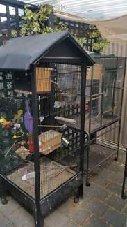 Budgies and Aviary cages for Sale