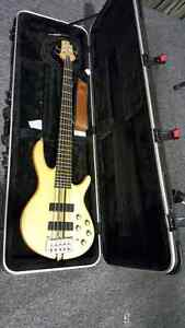 Cort A5 bass $900 Springwood Logan Area Preview