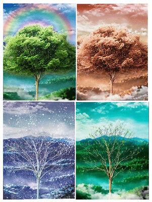 4 Views 3D Lenticular Poster- Four Seasons -12x16 Print