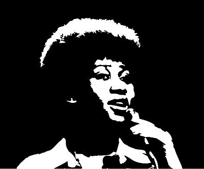 Diva Stickers (Aretha Franklin vinyl decal sticker soul r&b rock and roll)