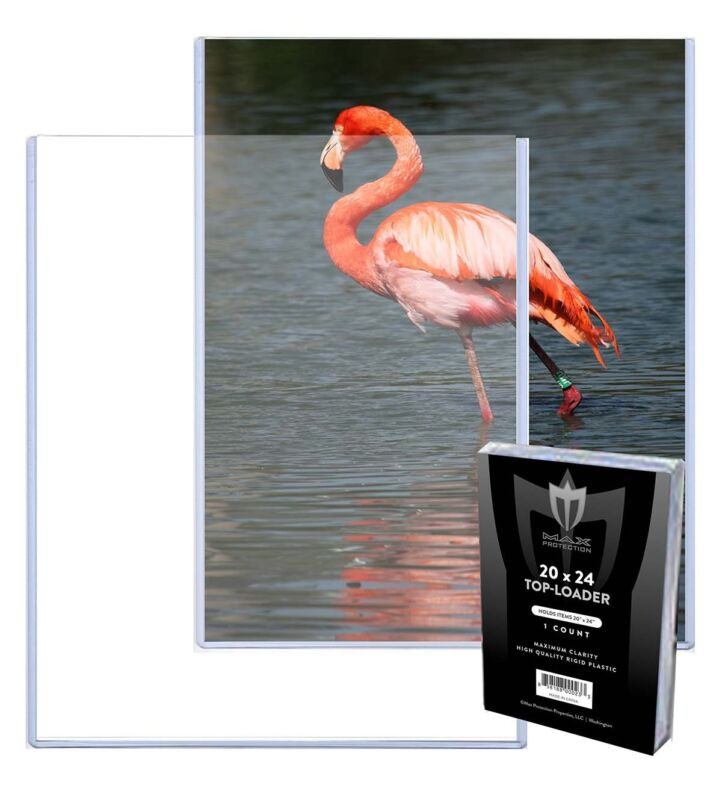 10 Max Pro 20X24 Poster Toploader Top Load Holder Photo Toploaders Covers