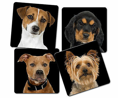 CUSTOM, PERSONALIZED PHOTO SQUARE SANDSTONE FOUR PIECE COASTER SET-ADD YOUR TEXT - Personalized Photo Coasters