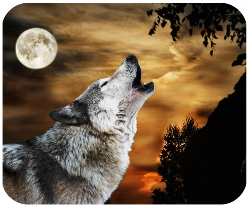 MOUSE PAD CUSTOM PERSONALIZED THICK MOUSEPAD - WOLF 4 - ADD ANY TEXT FREE