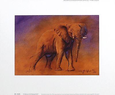 "JUSTIN TEW ""Victoria"" elephant africa SIGNED LIM ED! SIZE:29cm x 36cm NEW RARE"