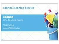 Private House and business cleaning