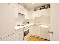 Spacious 5 bedroom flat is South Kensington ideal for students