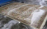 #1 CARPET CLEANING