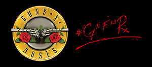 Guns N' Roses - Not In This Lifetime Tour - PIT TICKETS (FRONT)