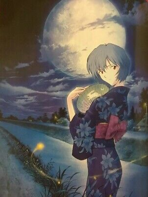 Evangelion NEWTYPE 100% Collection Art Book manga Illustrations F/S Japan ()