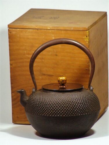 Antique Japanese Iron Kettle Teapot Tetsubin Tea Ceremony Artist Signed w/box